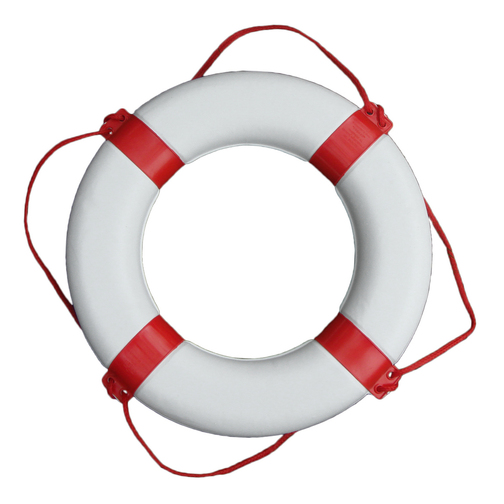 Image result for lifebuoy