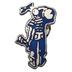 British Seagull Pin Badge