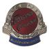 Freeman Cruiser Pin Badge